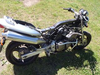 Honda Hornet CB 600F