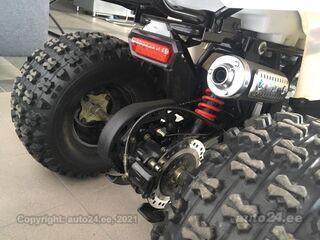 Tao Motor Hunter 4x2 125 cc