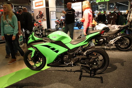 Kawasaki Ninja 300. Foto: Tarmo Riisenberg